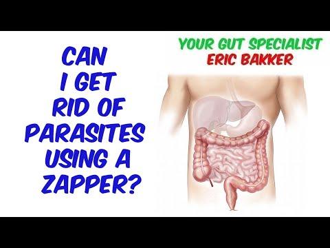 Paraziták az emberi testben tünetek gyógyszerek