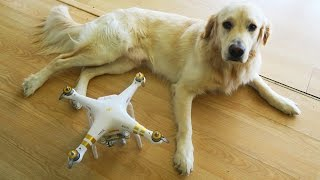 I Bought Cooper a Drone! (Super Cooper Sunday #48)