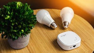 SMART LED Light Bulbs 💡 Amazon Echo and Google Assistant Compatible!