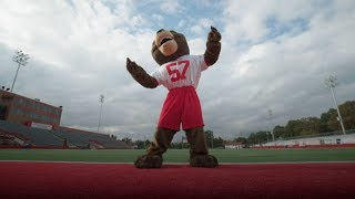 Behind the Mask: Mascots in the Natural State