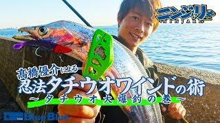 タチウオ爆釣!!ニンジャリを使用した「忍法タチウオワインドの術」by高橋優介