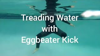 How to Tread Water With Eggbeater Kick [From Synchro Swimmer] Swimming Lessons For Adults