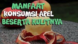 Jangan Kupas Kulit Apel saat Mengonsumsinya! Berikut Manfaat Makan Apel Beserta Kulitnya