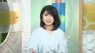 6月13日 びわ湖放送ニュース