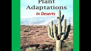 Adaptations of  Deserts Plants ( Cactus) -For Kids
