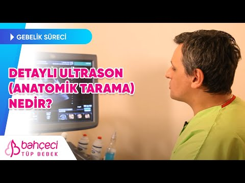 Detaylı Ultrason ve ya Anatomik Tarama Nedir?