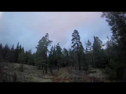 Snowless winter at -5C - Mobula7 HD (2020 #8)