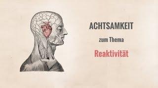 Video zum Thema Reaktivität