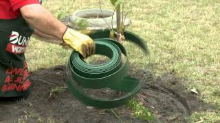 How To Install Garden Edging Around A Tree - DIY At Bunnings