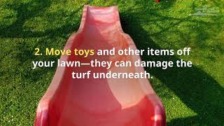 7 Fall Lawn Care Tips