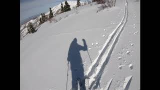 Painful-to-watch video of me skiing Ward canyon.