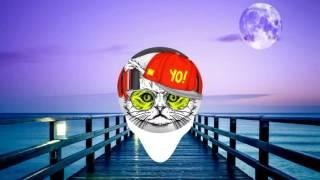 Alan Walker - routine (DJ CAT REMIX)