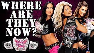 What Happened To Every WWE Divas Champion?