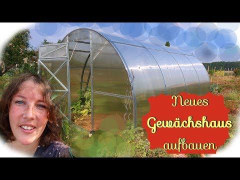 Neues Gewächshaus aufbauen 💚🌸🌱 Garten