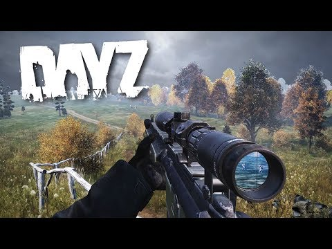Overwatch by a Guardian Sniper... - DayZ