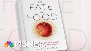 Examining Climate Change's Impact On Food | Morning Joe | MSNBC