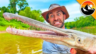 Catching a RARE Crocodile Gar!