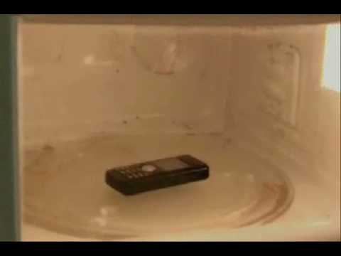Why you shouldn't put your cellphone in the Microwave? [Video]