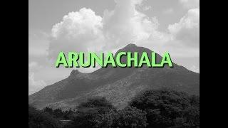 Talks on Sri Ramana Maharshi: Narrated by David Godman - Arunachala