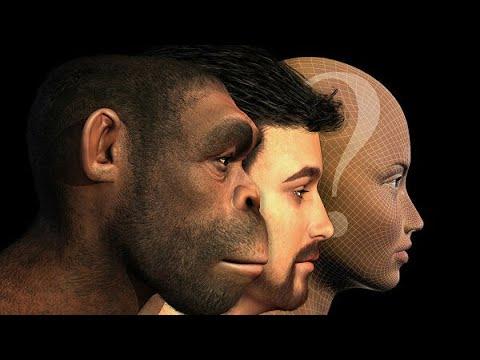 Как будут выглядеть люди будущего? Мнение антрополога