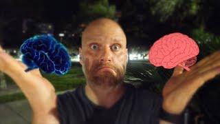 [NV#240] Jej mózg i jego mózg