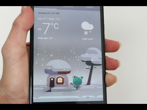 Google New Weather Card Design and A Frog!!! On Android