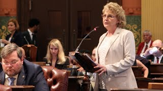 """Rep. Pam Faris Offers Amendment to """"Choose Life"""" License Plate"""