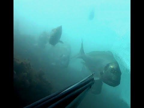 Il cubo dipende di pesca