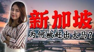 马来西亚为什么抛弃新加坡?因为华人比例还是因为政权的威胁?新加坡和大马的相似与不同之处!Why did Singapore separated from Malaysia? 【政经10分钟 EP46】