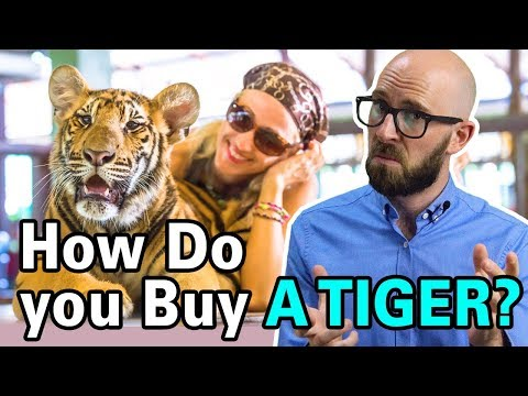 How are Rich People Able to Buy Exotic Pets Like Tigers?