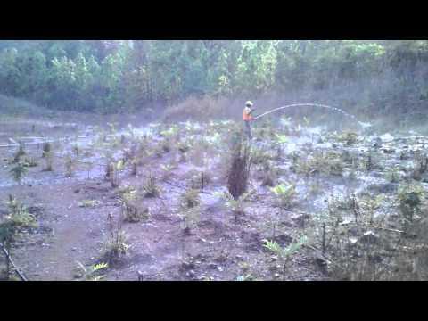 Micro-Irrigation System