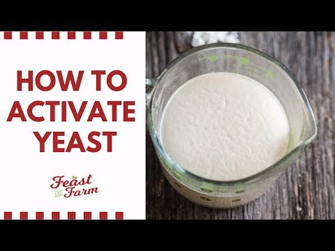 , title : 'How to activate dry yeast (Be sure it's alive!)