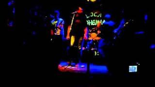 Local 21 - El Burrito (cover Divididos) locabohemia 03-09-10 by M@GO