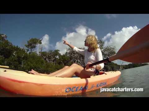 Sail aboard Java Cat for a Key West Eco Tour