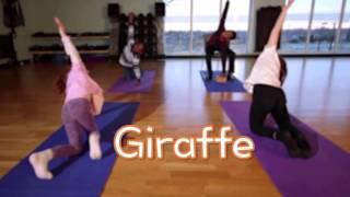MindMasters 2 - Animal Yoga