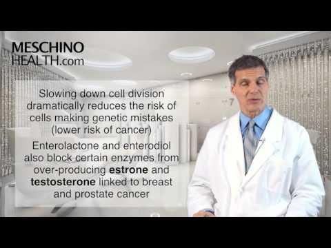 Leukozyten im Urin und weiße Blutkörperchen in Prostatasekret