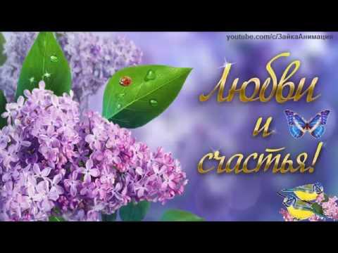 Свадебный салон счастье в новокузнецке