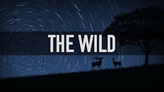 Respawnd - The Wild
