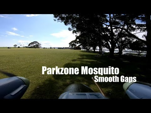 et-vector-powered-parkzone-mosquito--smooth-gaps