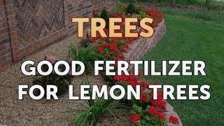 Good Fertilizer for Lemon Trees