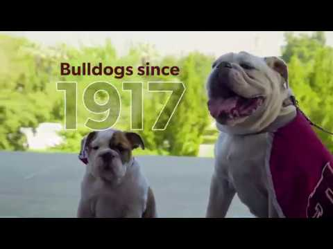 University of Redlands - video