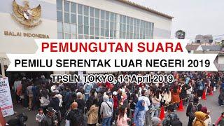 Potret Antusiasme Pemilu 2019 di Tokyo, WNI Rela Antre Berjam-jam