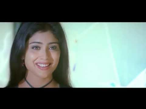 Shriya & Master Teja Ultimate Comedy Scene || Jabardasth Comedy Scenes || Shalimarcinema