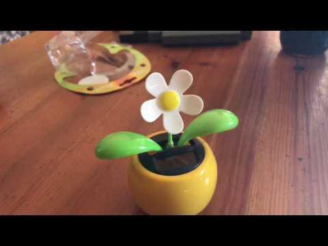 Flip Flap Solar Blume Wackelblume Solarblume unboxing und Anleitung