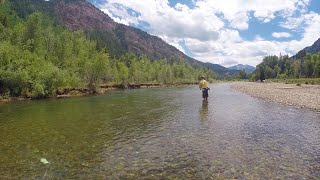 Mountain Whitefish Fly Fishing