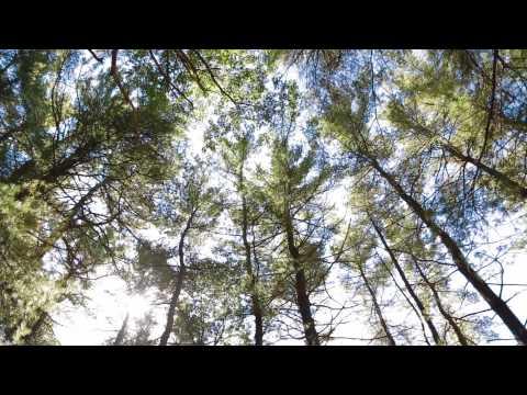 Video Rhode Island: Scenic Outdoor Adventure on the U.S. East Coast