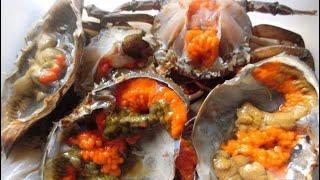 น๊อตโตะ ยำปากบาน EP.17 | ปูไข่ดองน้ำปลา มาแล้วไม่สั่งถือว่าพลาด ชุดละ250บาท ถูกเวอร์!!!