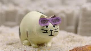 [과학상식] 과학할고양 - 모래
