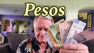 Pesos  Mexican Money History of the Peso