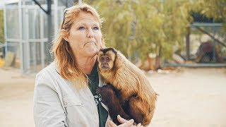 Abused for Views: Mistreated Exotic Pets of Social Media | TFIL Films Documentary